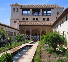 Palace within the Alhambra in Granada, Spain   by ljm000