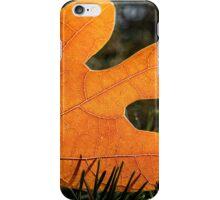 Autumn leaf on the ground iPhone Case/Skin