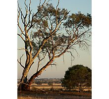 Towards Nhill Photographic Print