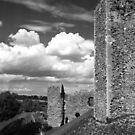 framlingham castle by Di Dowsett