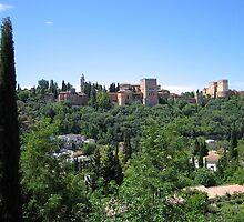 The Alhambra, Granada, Spain by ljm000