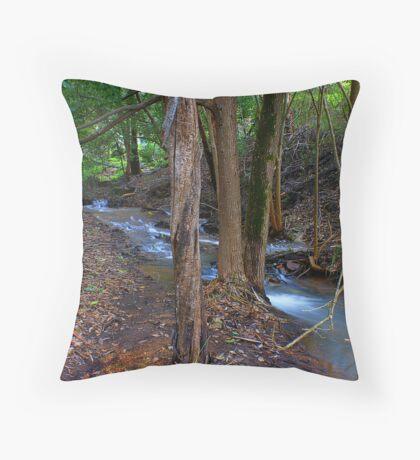 ~ Serenity ~ Throw Pillow
