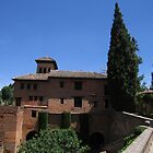 Palace within the Alhambra, Granada, Spain by ljm000