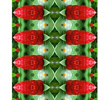 Tiki Soldiers Photographic Print