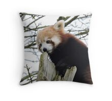 We Rise By Lifting Others Throw Pillow