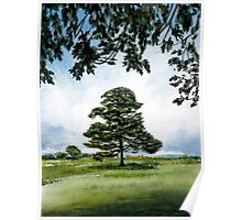 New Forest Tree Poster