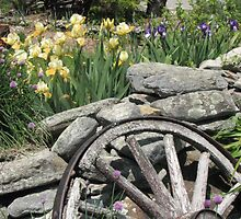 Old Wheel and new flowers by sandoodles