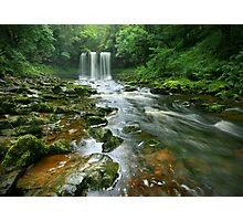 Rivendell Green Photographic Print