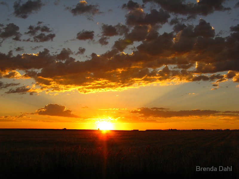 One Glorious Sunrise by Brenda Dahl