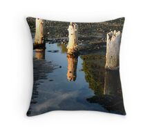 Ground Is Sky Throw Pillow