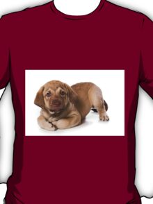 brown puppy retriever T-Shirt