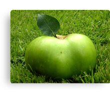 Grass Apple Canvas Print