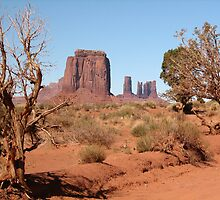 Monument Valley, Utah, USA by Sue Leonard