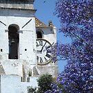 Spanish Church by Debbie Vine