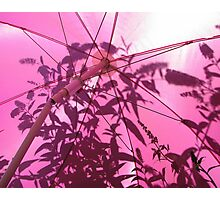 Under the Parasol Photographic Print