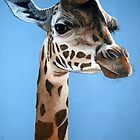 Giraffe portrait by Robbiegraham