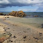 Seascape at Skerries by Martina Fagan