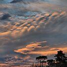 Clouds XXVII by andreisky