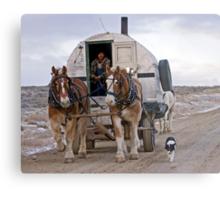 Sheep Wagon, Red Desert, Wy Metal Print
