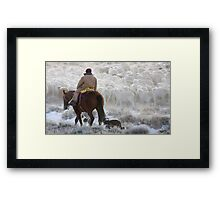Sheep Herding, Red Desert, Wyoming Framed Print
