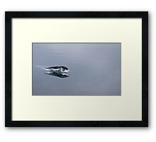 Glacier Fish Framed Print