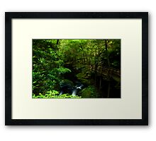 Walking The Red Trail Framed Print