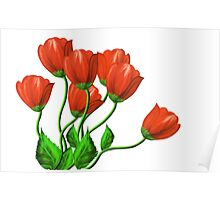 Red flowers on a white background Poster