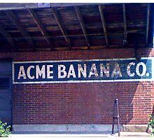 Go Bananas Photographic Print