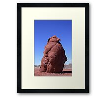 Termite mound impersonating a penguin... Framed Print