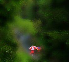 Rain...Rain...Rain... by Angelika  Vogel