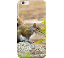 Ready To Romp iPhone Case/Skin
