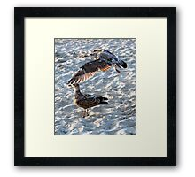 Above and Below... Framed Print