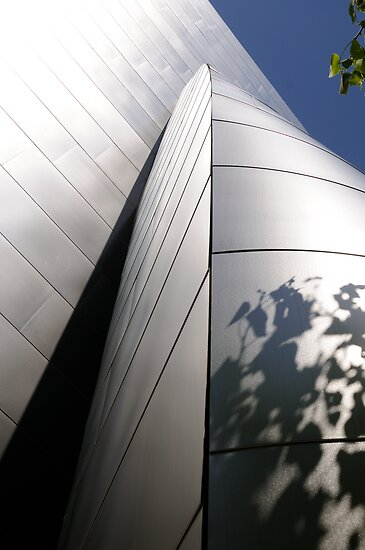 Disney Hall_6 by tstreet