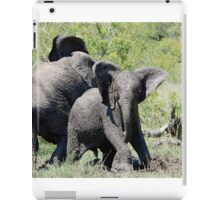 O NO, THIS IS MY SPACE! THE AFRICAN ELEPHANT – Loxodonta Africana - AFRIKA OLIFANT iPad Case/Skin