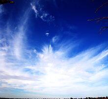 I won't to be a storm! by Bindi Hatcher