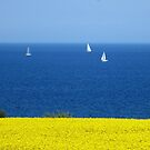 Spring at the Baltic Sea by jchanders