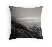 The Rescue Trail Throw Pillow