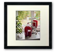 Making Country Wine: Plum Framed Print