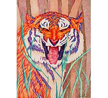 tiger fangs Photographic Print