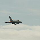 RAF Typhoon by Michelle Welch