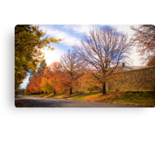 Autumn colours in Beechworth outside the gaol Canvas Print