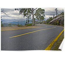Bended Road Poster