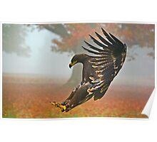 Eagle Landing Poster