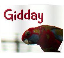Gidday Gidday Poster