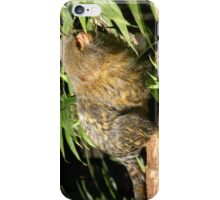 Pygmy Marmoset iPhone Case/Skin