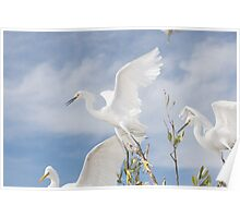 The Three Egrets Poster