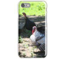 FLOCK OF TURKEYS iPhone Case/Skin