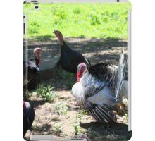 FLOCK OF TURKEYS iPad Case/Skin