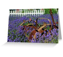 Adrift in the Lavender Greeting Card