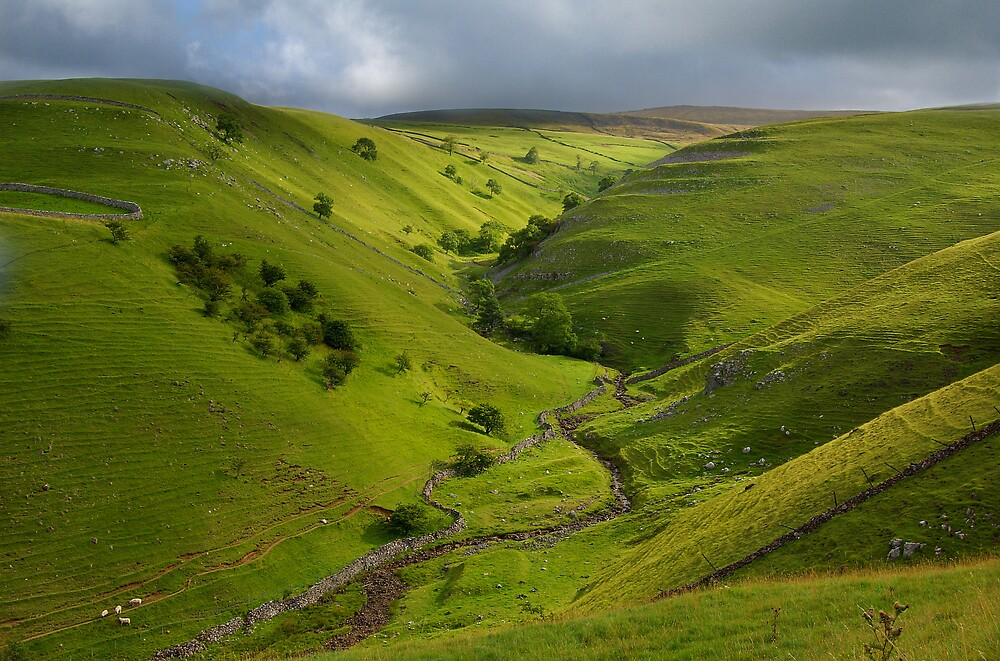 The Valley of Dowber Gill Beck by Andrew Leighton